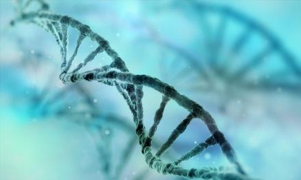 Gum disease genes identified